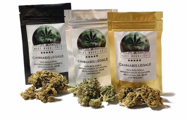 cannabis chiusi negozi marche