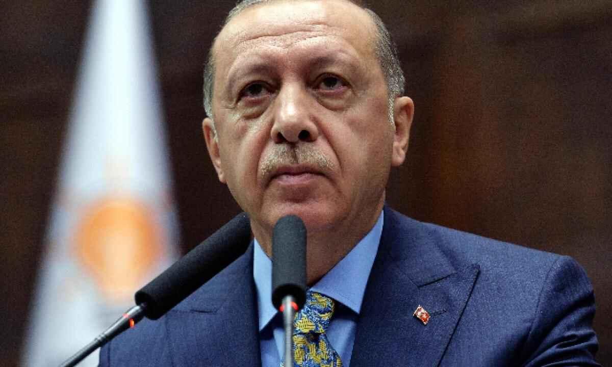 erdogan dittatore draghi